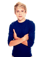 Niall PNG by mituesposito