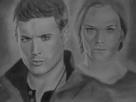 sam and dean winchester by widgge
