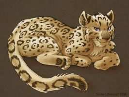Snow Leopard by spocha