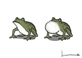 A Frog by Louisetheanimator