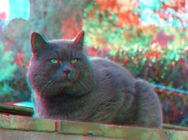 Capri 3 3D Anaglyph by yellowishhaze