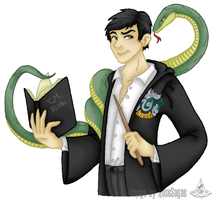 Tom Marvolo Riddle by RoseSagae