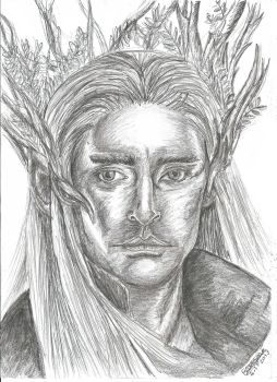 Thranduil the Elvenking by lizzie9009