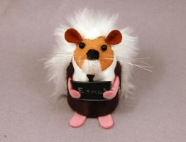 Albert Einstein Hedgehog by The-House-of-Mouse