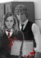 draco and hermione by ohmonegerie