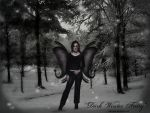 Dark Winter Fairy by celticpath