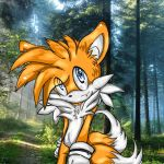 Tails by Tailsu-cun