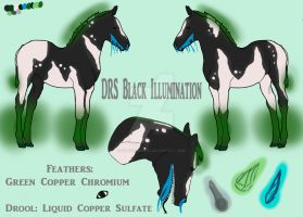 DRS Black Illumination Foal Reference by FelTheLioness