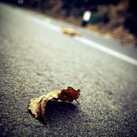 .Street's victim by tgphotographer