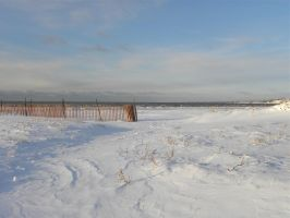 The  beach in the winter by Agatje