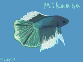 Betta Fish: Mikaasa by myexplodingcat