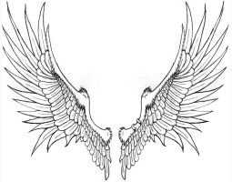 Brack's Wings -for tattoo- by Katryn-Noquisi