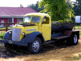 Recycled in Oregon by MFDonovan