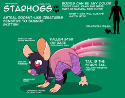 Starhogs Concept Sheet by DrDoomy