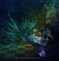 Magic Bird by silviya