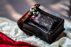 Leather Pouch 2 by Force4Photos