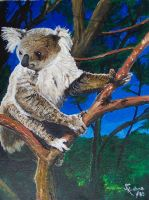Koala Bear by jfkpaint