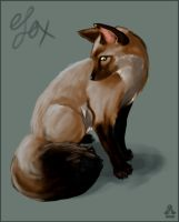 fox that was a cat by sugar-cat-candy