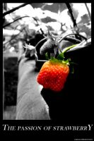 THE PASSION OF STRAWBERRY by Giemax