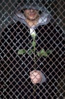 Caged Romance by BWilliamsPhotography