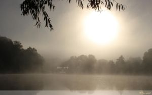 Hazy Lake Wallpaper by Clu-art