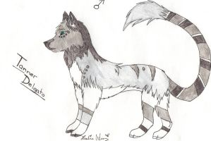 Contest Entry Tanner by alicewolfnas