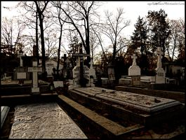 Cimitir by agathodaimon89