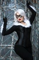 Black Cat I by EnchantedCupcake
