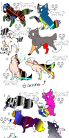 dogs and cats adoptables by stephany-evil