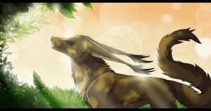 Under the summer rays by Silvergrin-W