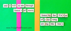 The Daily Magnet #260 by FridgePoetProject