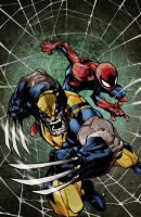 Savage wolverine and spider-man by richyunspoken