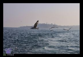 trip to Turkey 03 by alitraa