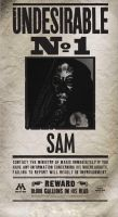 Undesirable me by Sam-wyat