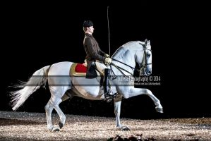 Spanish Riding School 28 by JullelinPhotography