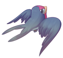 Taillow by Ganemi
