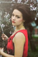 Lady in red by alina0