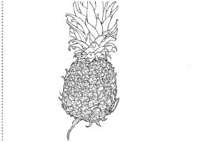 Pineapple by keiross