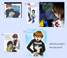 Contest Vote 1 - DA ID by Kaiba-Fans