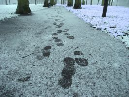 trying to walk in your footsteps by michael514
