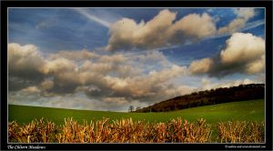 The Chiltern Meadows by Andrew-and-Seven