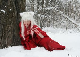 InuYasha is not dead.. yet - 6 by Katana-the-Grey