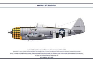 P-47 USAAF 350th FS 1 by WS-Clave