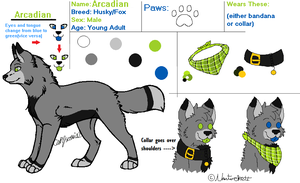 Official Arcadian Reference 2013 by Nantuckett