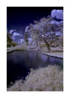 Infra Red Lake no.1 by stevenjo