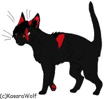 Karth my Cat OC by KathUchiha