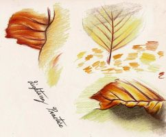 Coloring Practice - Leaves by Mitch-el