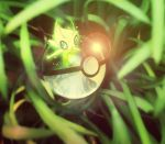 Celebi  Pokeball by Jonathanjo