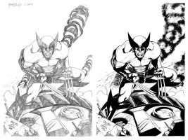 Wolverine Inks Comparison by TomParrish