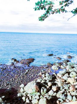Rocky Shore by SurreptitiousBloomer